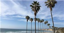 Palm Trees overlooking park and beach