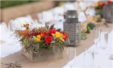 La Jolla Shores Hotel - SheWanders Photography - Tablescape