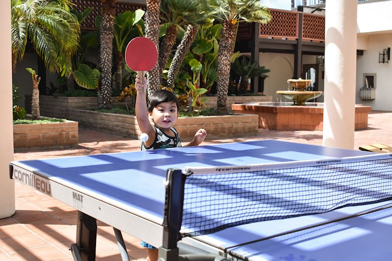 Summer Days Ping Pong Game