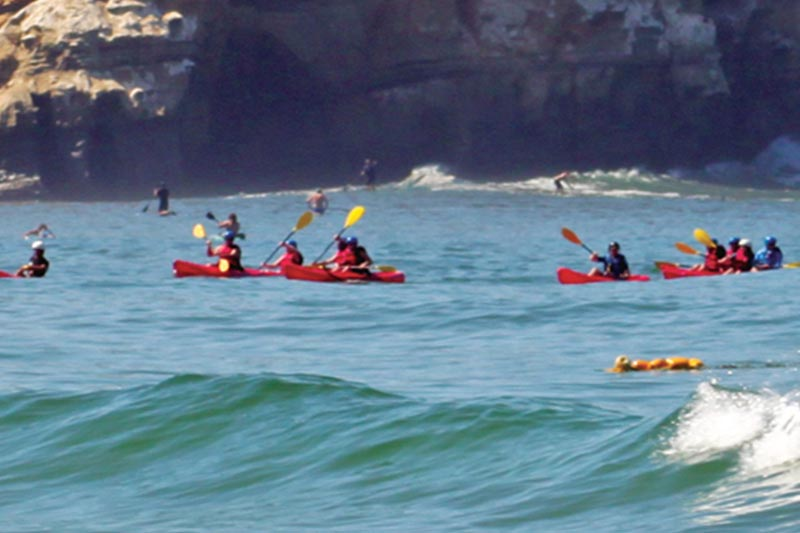 Group Activities of California