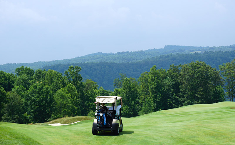 A golf cart on a golf course that is surrounded by greenery.