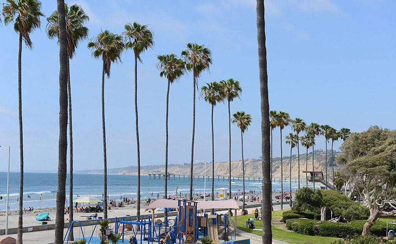 Picture with palm trees along the beach, showing a playground for children, pathways for people to ride a segway, and a pier on the ocean.