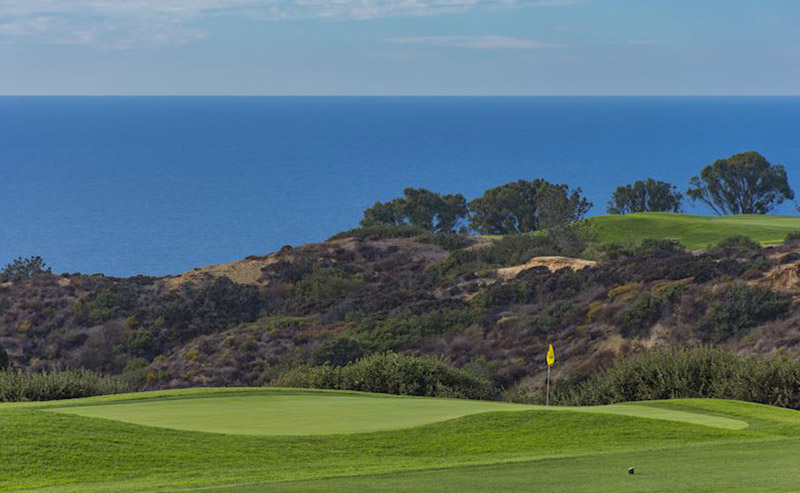 View of the green Torrey Pines Golf Course that is located on the breezy cliffs filled with trees and bushes above the dazzling Pacific Ocean.