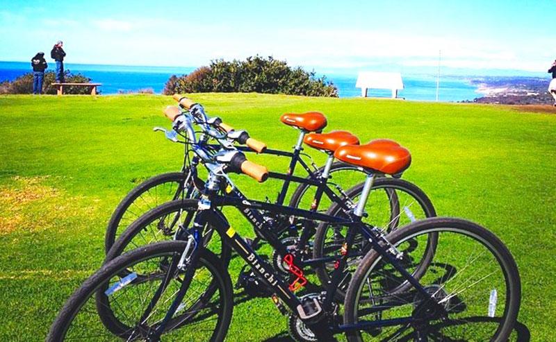Three bikes parked on the grass at Mt. Soledad