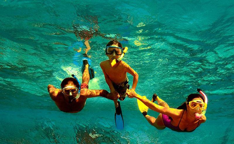 Three snorkelers exploring the La Jolla Ecological Reserve